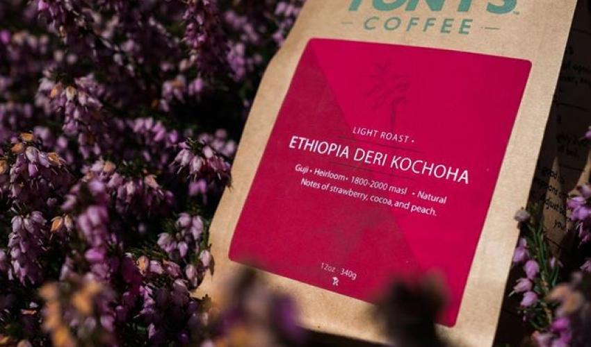 Roast of the Month: Tony's Ethiopia Deri Kochoha