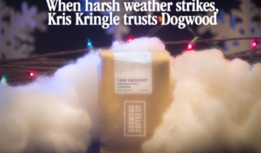 12 Days of Coffee: Dogwood Coffee Company - Snow Emergency